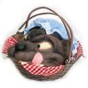 Rotkäppchen Picknickkorb mit Wolf
