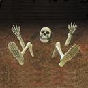 Skeleton Parts Lawn Decoration