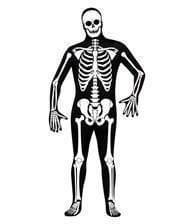 Skelett Skin Suit