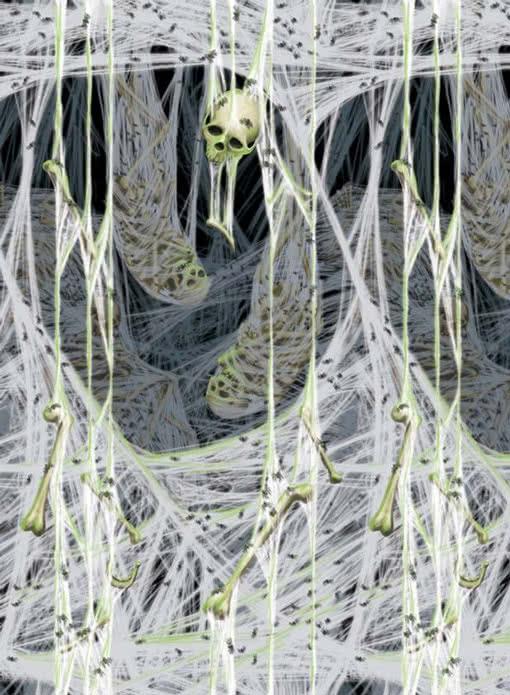 Spinnengruft wandfolie wandekoration mit spinnweben for Wandfolie schwarz
