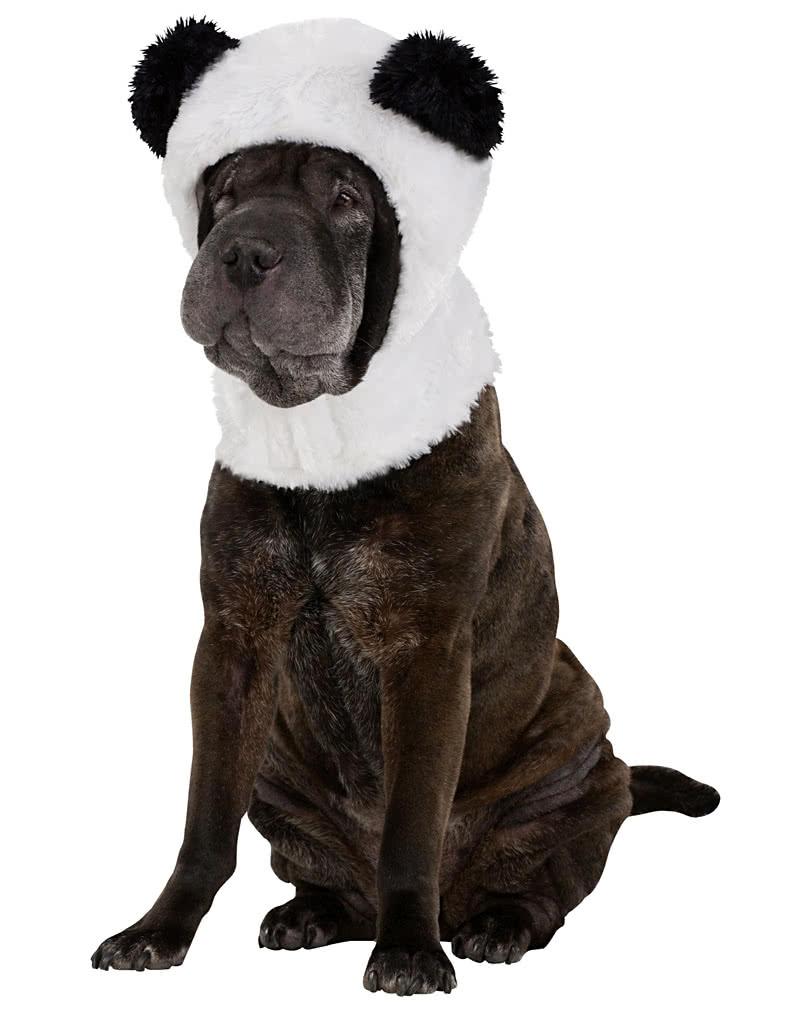 hundem tze panda pandab rm tze f r hunden horror. Black Bedroom Furniture Sets. Home Design Ideas