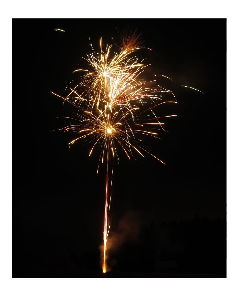 Grune Farbe Feuerwerk :  20 Schuss  Montezumas Rache als Feuerwerk  HorrorShopcom[R